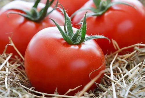 Как правильно хранить спелые помидоры и зеленые плоды?