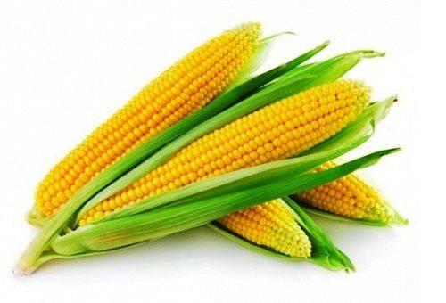 Как правильно сохранить кукурузу